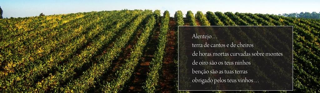 Vinhos DOC